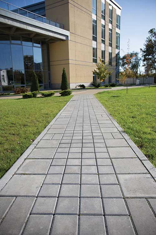 Тротуарна плитка квадрат 15-15